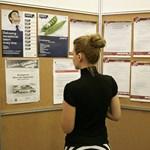 Mamut támadja le a munkaerőpiacot