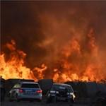 Százötven hektáron égett a nádas Farmos közelében