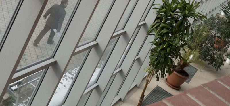 Virágba borult az ELTE lágymányosi campusa: a nap képei