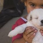 L. Ritók Nóra: A gyerekszegénységről