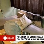 Poloska és vizeletes matrac várja a BKV munkásszállójára érkezőket