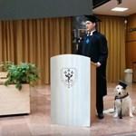 Megható videó: kutyájával együtt diplomázott a pécsi hallgató