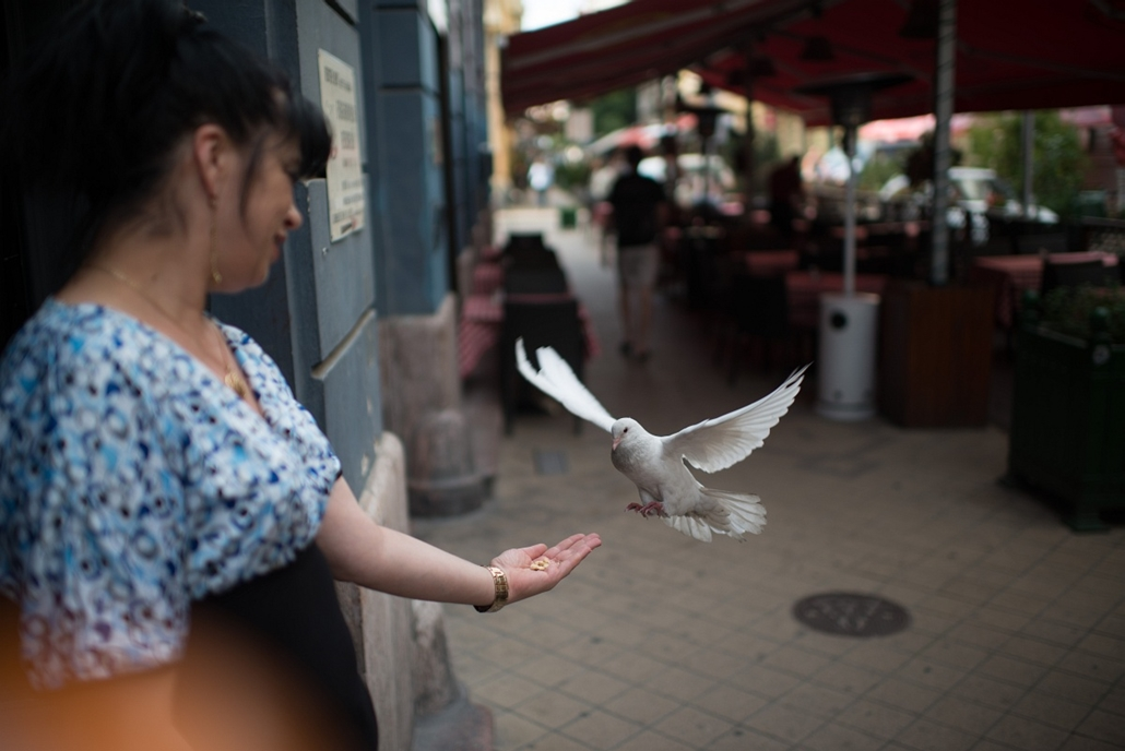 2012.08.16. - Galamb száll egy pincérnőhöz a Ráday utcában - évképei