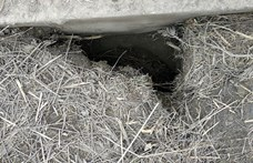 """Újabb """"migráns-alagutat"""" találtak a rendőrök"""
