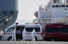 Elhagyták Japánt a vesztegzár alá vett üdülőhajó amerikai utasai