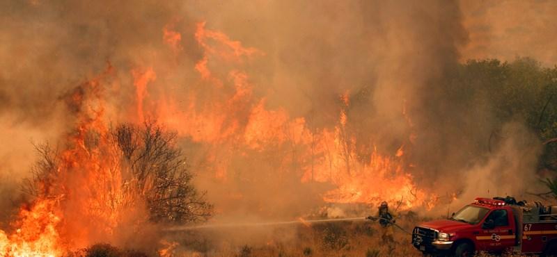 Megint erdőtűz van Kaliforniában, tízezreket költöztettek ki