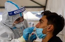 A magyarok közel felét anyagilag hátrányosan érintette a járvány