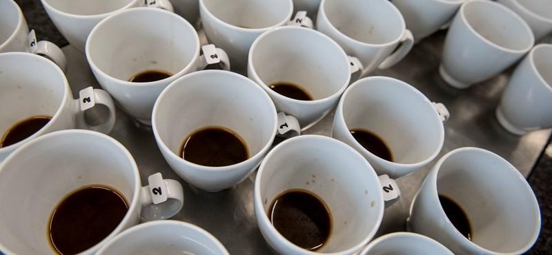 Nem volt víz a kávénak, kényszerleszállást hajtott végre az utasszállító