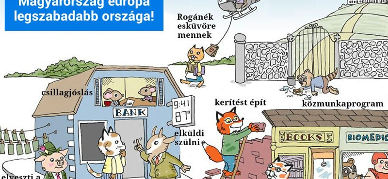 Mém: mit művelnek Tesz-vesz város lakói Orbán-Magyarországon?