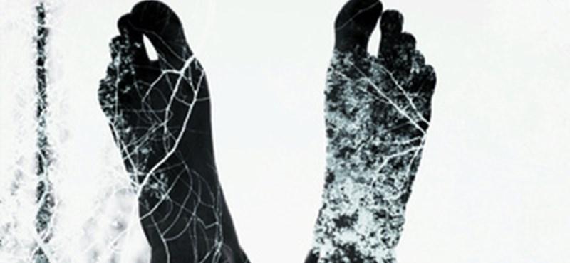 Ingyenzene: Xan Campos - Acrofobia