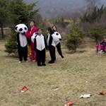 Észak-Korea: a Kedves Vezető falansztere - Nagyítás-fotógaléria