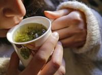Hatékony harc a felfázás ellen: gyógynövények!