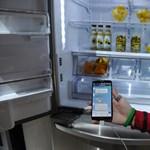 10 trükk, amitől semmi sem romlik meg a hűtőjében, és még spórolhat is