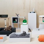 Hamarosan a kutyáknak is lehet bútort venni az IKEA-ban
