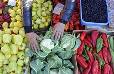 Élelmezési válság jöhet, pedig van elegendő étel