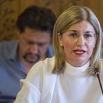 Több tízmilliót érő földjeit hagyta ki vagyonnyilatkozatából a miniszter