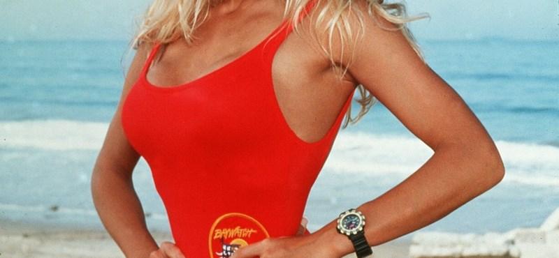Hat évesen molesztálták, később megerőszakolták Pamela Andersont