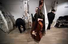 Öt ingyenes koncertet ad a Budapesti Fesztiválzenekar