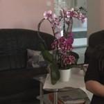 Hat éve kinézett egy nőt, azóta zaklatja – videó
