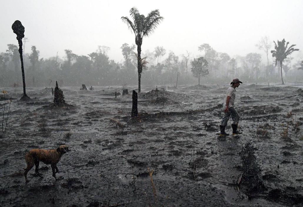 nagyítás afp.19.08.26. Brazília, amazon, esőerdő, tűz után