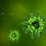 Megvan a koronavírus ellenszere