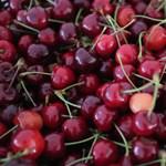 Nagyon drágák lesznek a gyümölcsök a sok csapadék miatt
