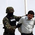 Mexikói drogbáró pénzéből építene határfalat Ted Cruz