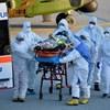 Ausztriában már lassabban terjed a járvány