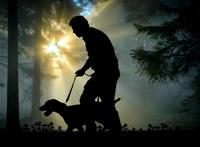 Érdekes dolog derült ki a kutyatartókról