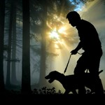 Meglepő adattal álltak elő kutatók a kutyasétáltatás veszélyeiről