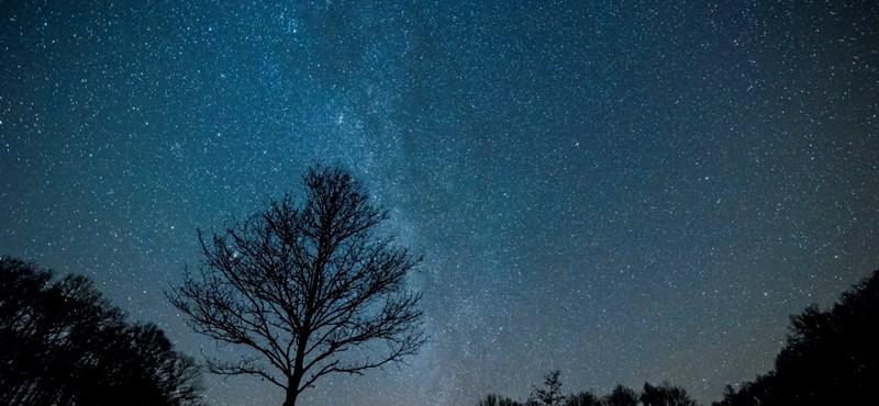 Szupernóvát és csillagképeket ábrázolhat egy több ezer éves indiai sziklarajz