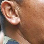 Kobravérrel, sült kígyóval élhetik túl a katonák a dzsungelt – videó!
