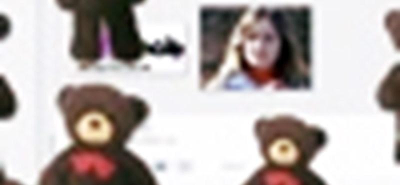 Rejtett Teddy mackók a Picasában
