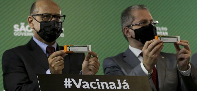 Mindössze 50 százalékos hatékonyságúnak bizonyult a kínai Sinovac vakcina