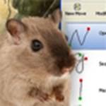 Windows funkciók és programok elérése egérgesztusokkal