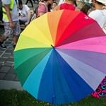 Jogellenesen utasították el a pécsi leszbikus nő örökbefogadási kérelmét