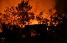 Bolsonaro: Brazíliának nincs pénze az erdőtüzek ellen harcolni