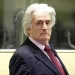 Az ügyészség sohasem engedné szabadon Karadzicot