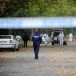 Blikk: Vallott a népligeti gyilkos, nemsokára előzetesbe kerülhet