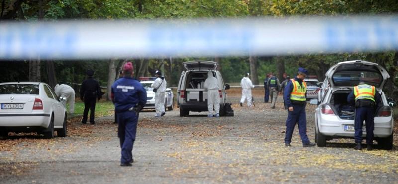 Egy buszmegállóban ismerkedett meg gyilkosával a Népligetben meggyilkolt nő