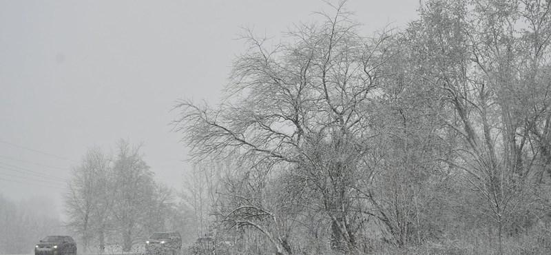 Fotók: Igazi téli varázsvilággá változott a debreceni Nagyerdő
