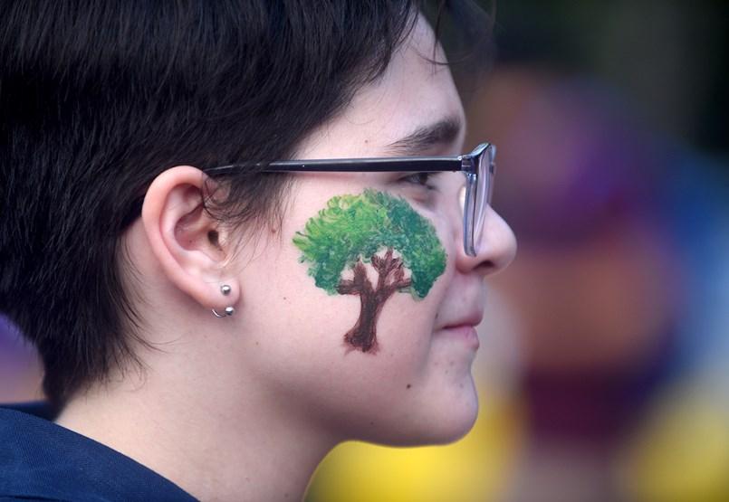 Álmodozásnak tűnik, de ártani nem árt, talán segíthet is a közösségi erdőtelepítés