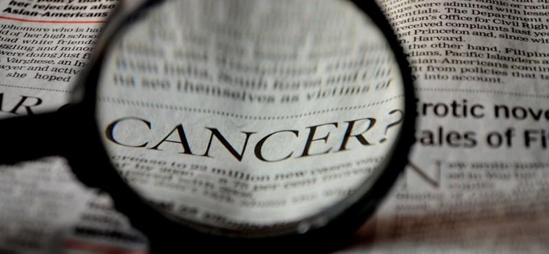 Gyarmathy Éva: A rosszindulatú daganattal nem szabad tárgyalni