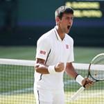 Djokovic ötszettes mérkőzésen nyert Del Potro ellen