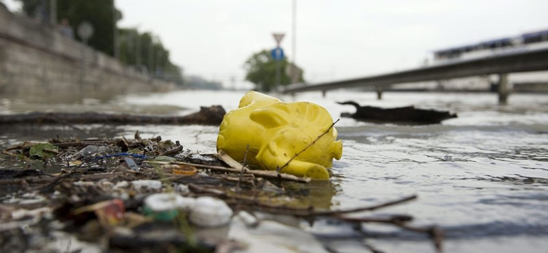 Önkéntesek tisztítják meg a hétvégén a Duna-partot, bárki csatlakozhat
