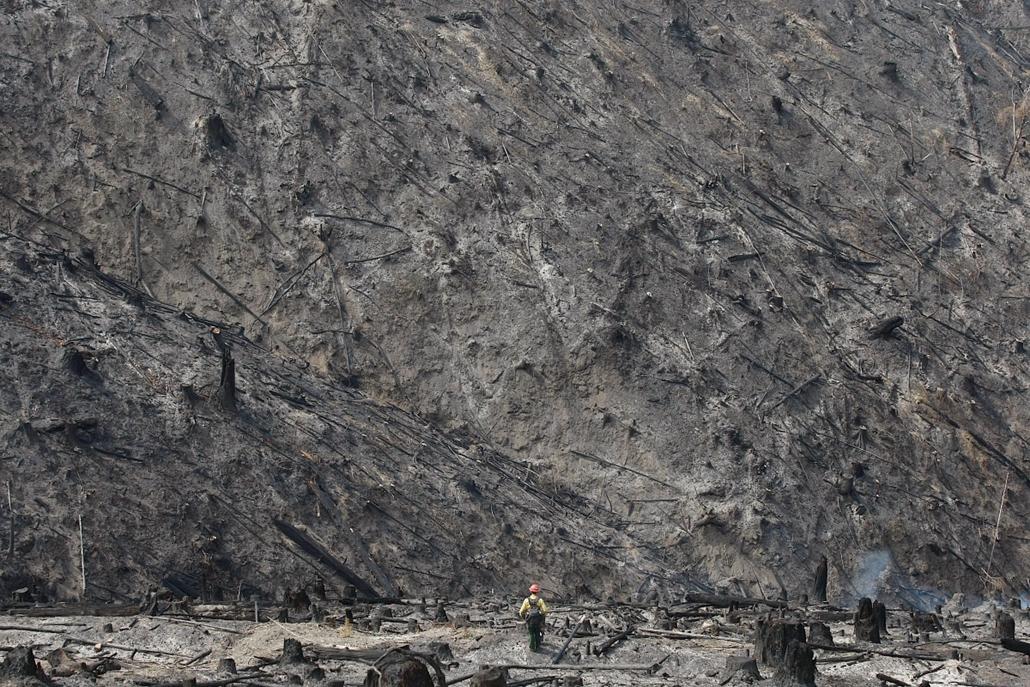 AP!!! május20-ig!!! - Erdőtűz Oregonban, 2013. május 7. Egy tűzoltó egy leégett erdős területen az Oregon állambeli Canyonville közelében 2013. május 7-én.
