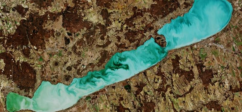 Kutatók: A felszabaduló foszfor miatt algásodott el a Balaton