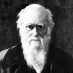 180 év után megoldották az evolúció egyik nagy rejtélyét