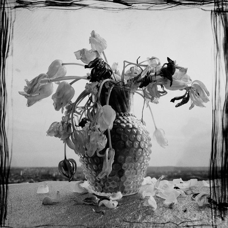 Agónia (1991) Nagyítás fotógaléria