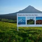 Zseniális (óriás)plakátok bukkantak fel Új-Zélandon: mintha csak a Facebook ajánlóit látnánk a szabadban